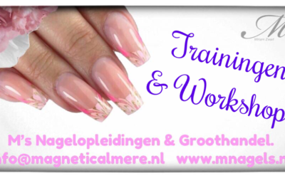 Trainingen & Workshops